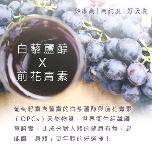 倍韻白藜葡萄精華膠囊食品