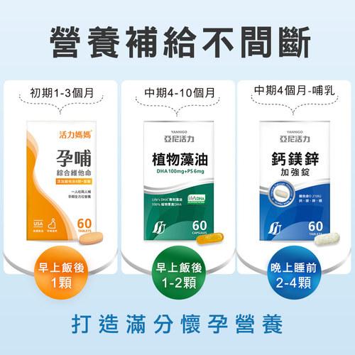 【孕期營養聰明組】孕哺綜合維他命+藻油DHA+鈣鎂鋅
